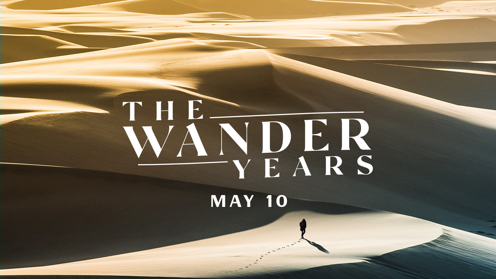 The Wander Years