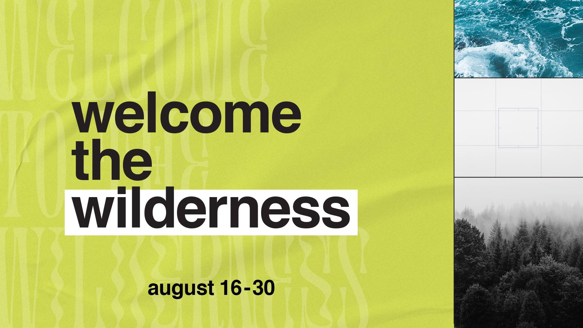 Welcome the Wilderness
