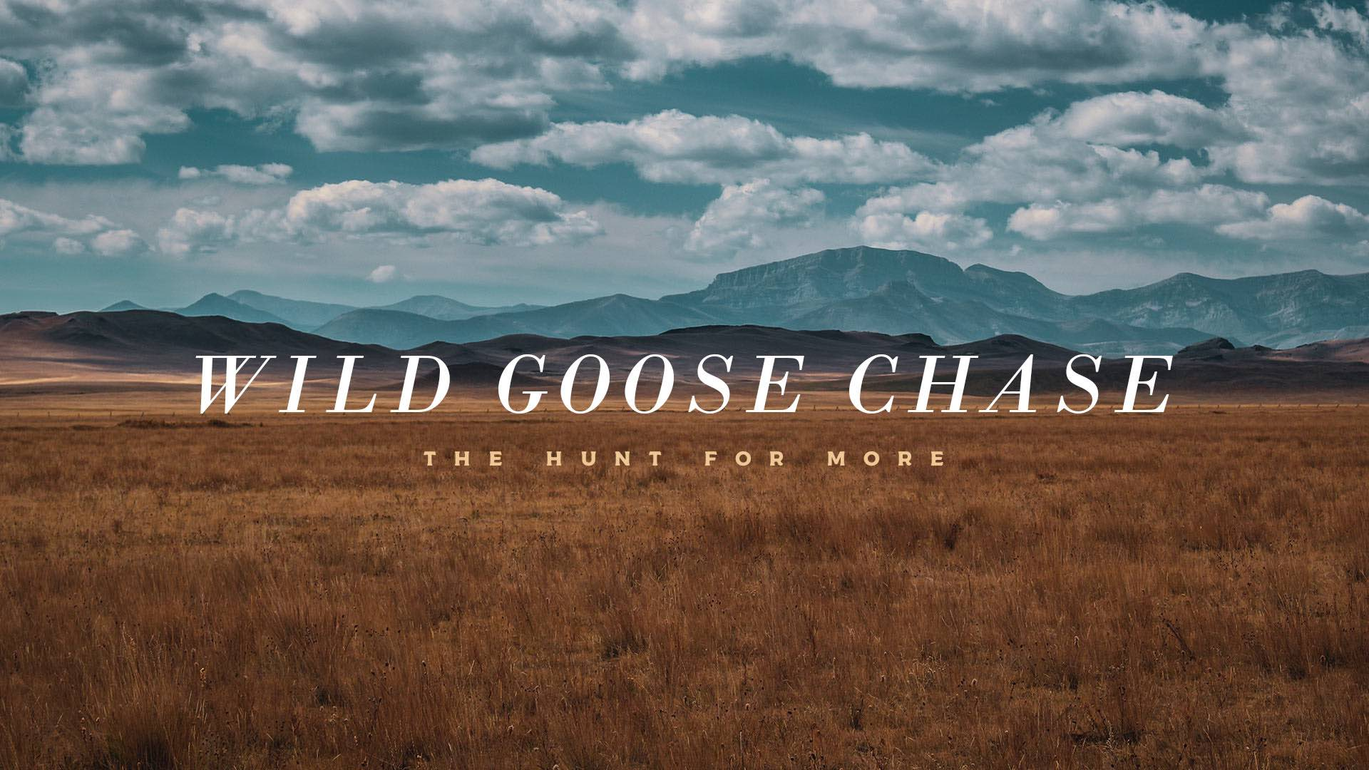 Wild Goose Chase: The Hunt for More